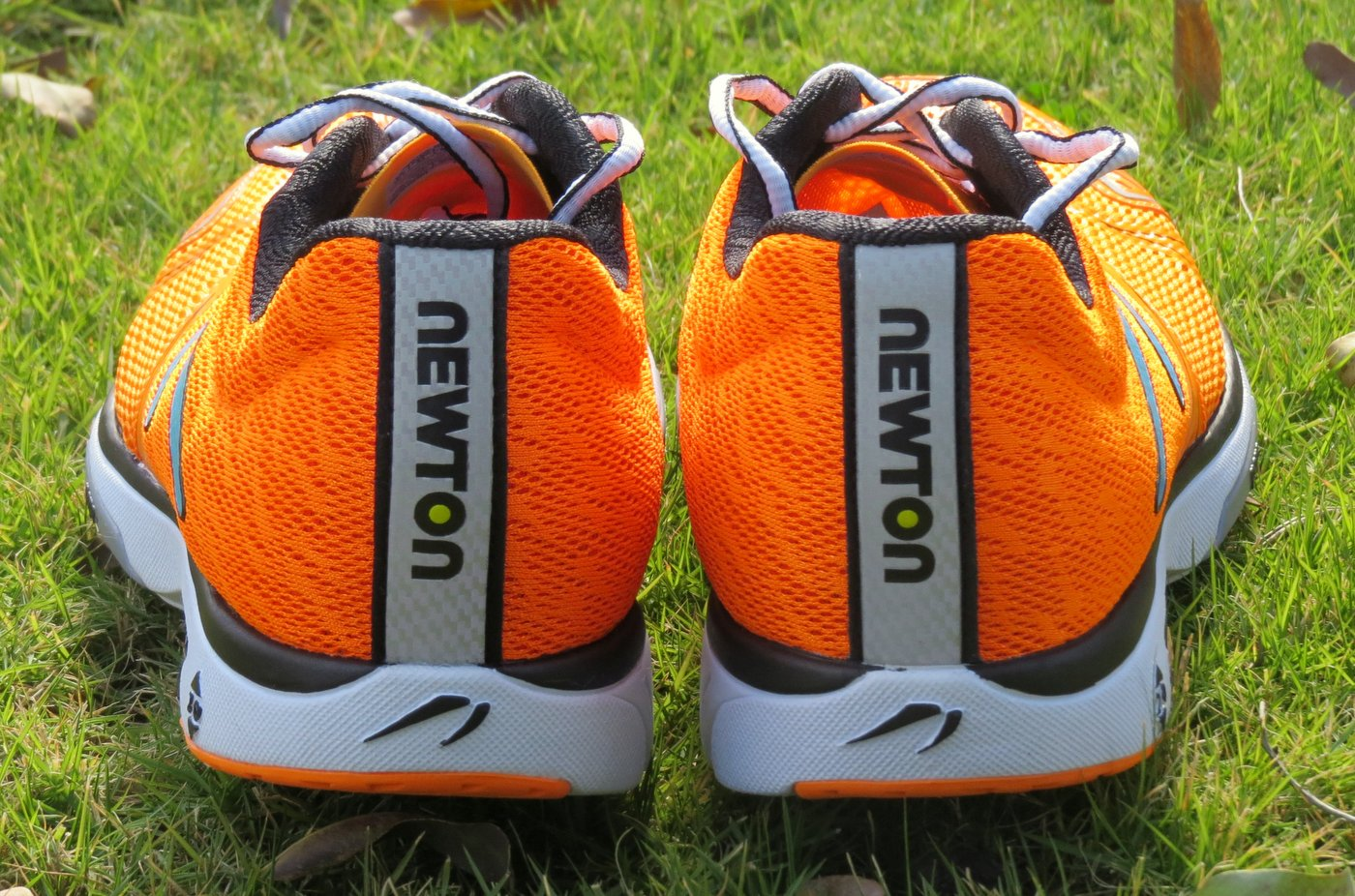 נעליים לריצת כביש