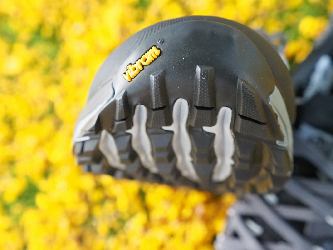 shoe tip
