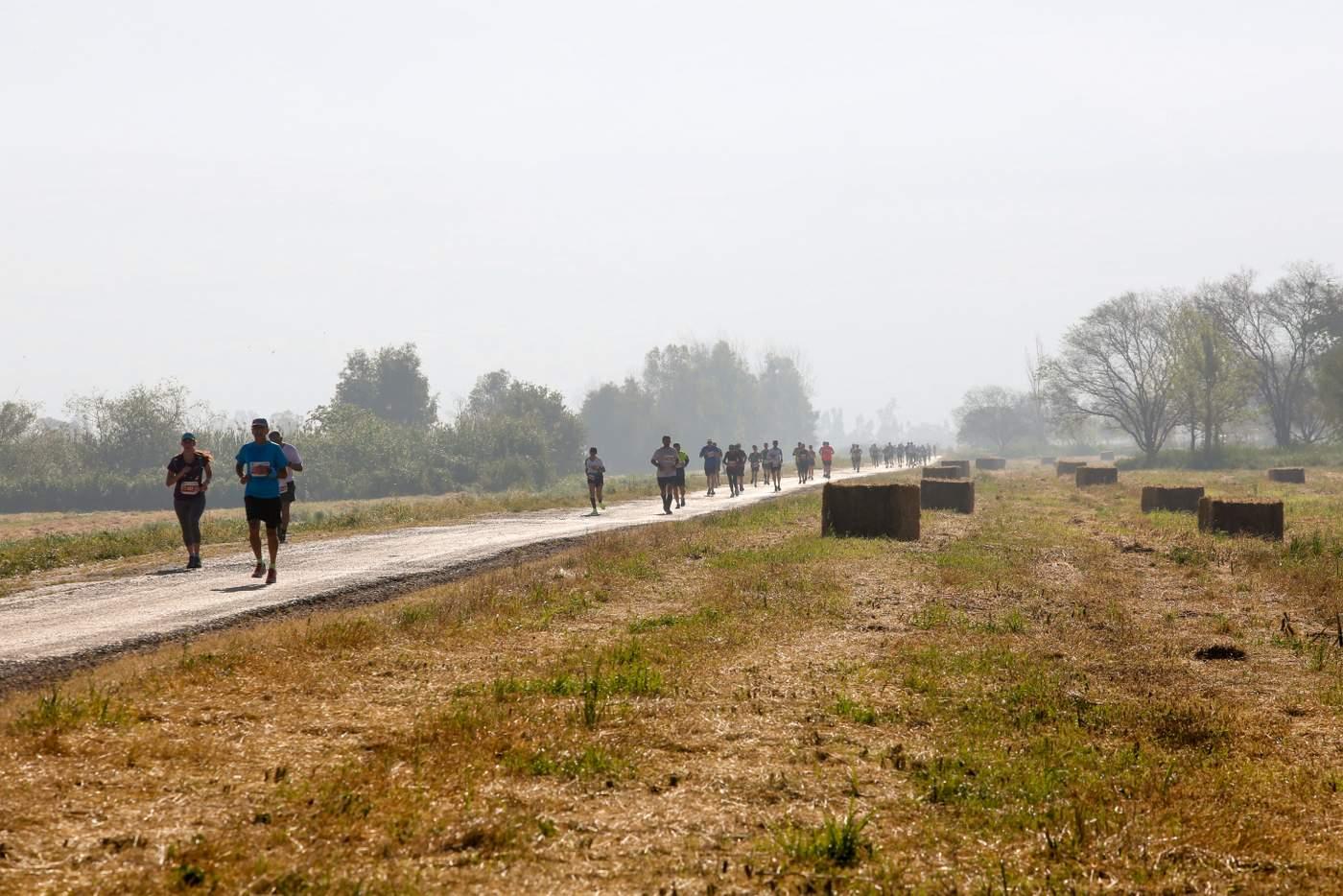 תחרות ריצה מרוץ העגור
