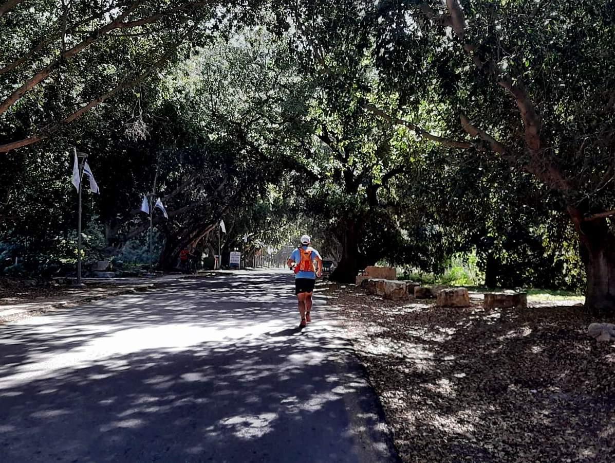 מסלולי ריצה מומלצים